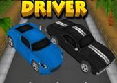 Çılgın Otoyol Sürücüsü
