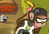 Maymun Adasında Motocross